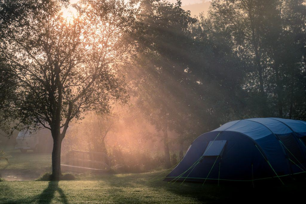 Early morning sun shining through the trees and mist onto a tent at Ffrorest Fields Campsite in Powys.