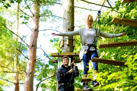 Go Ape in Grizedale Forest