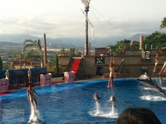 Dolphin show at Mundo Mar