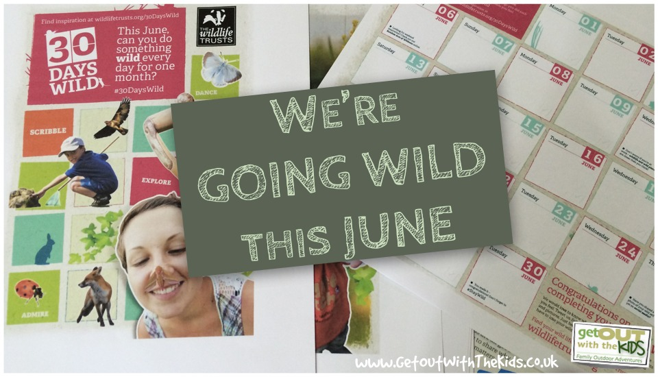 Going Wild in June