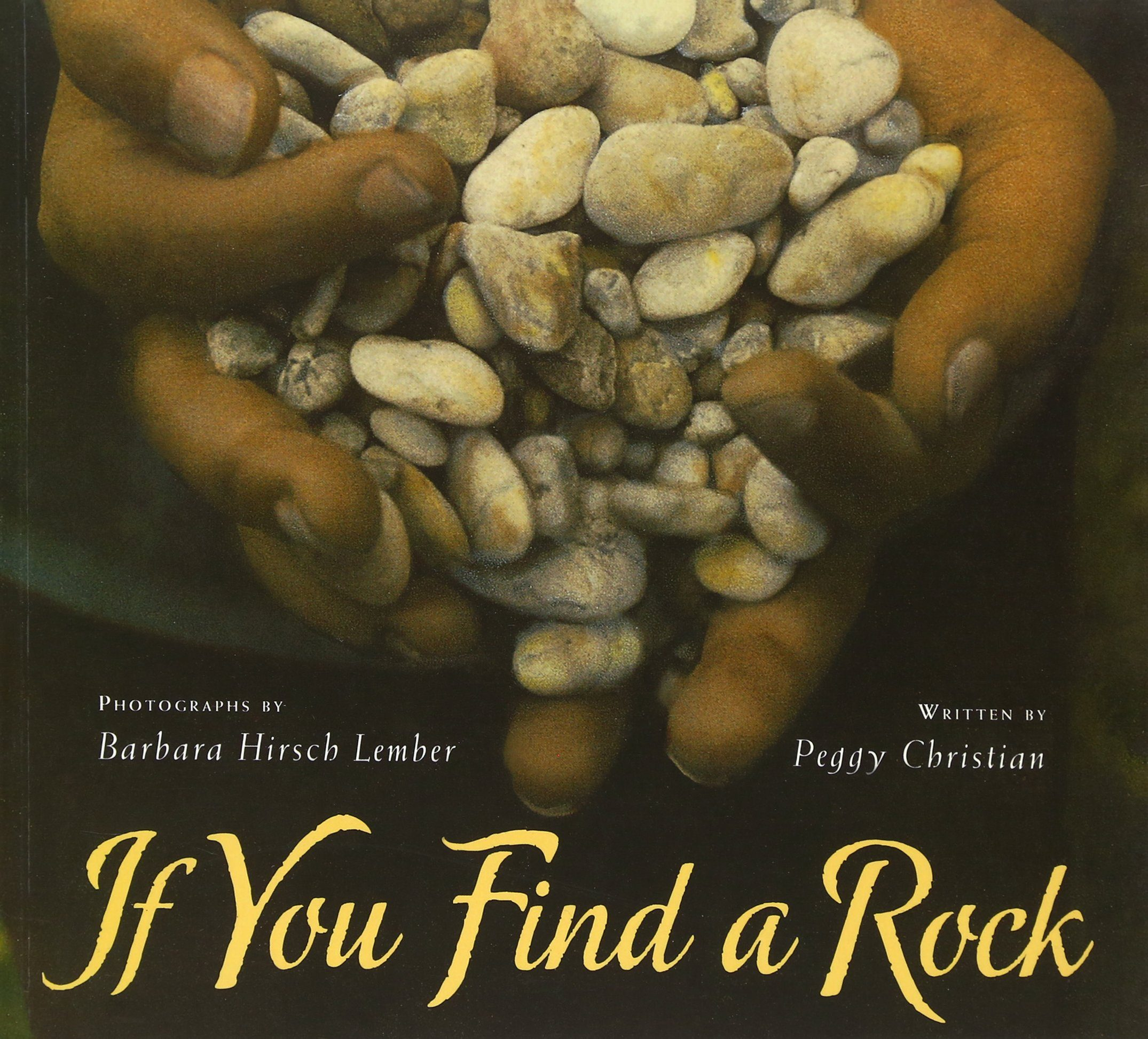 If you find a rock, childrens book
